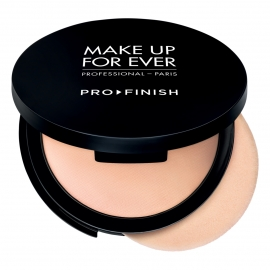 PRO FINISH MULTI-USE POWDER