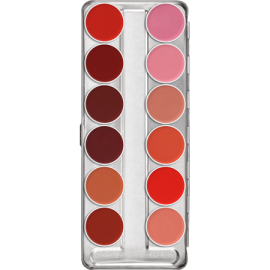 LIP ROUGE PALETA DE 12 COLORES  40 g